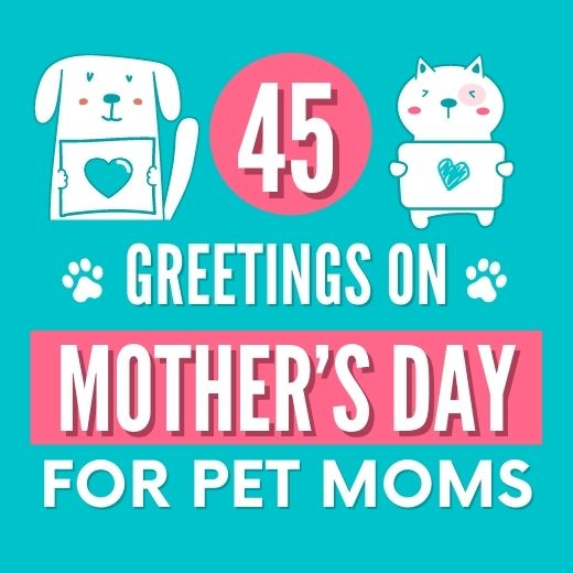 45 PURR-fect Mother's Day Greetings for Pet Moms